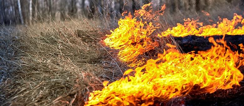 Workplace Burn Injuries